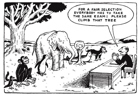 Standarised testing assumes everyone is equal in ability.  But differences are natural.
